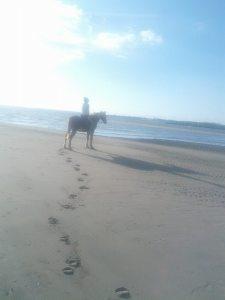 0 horse riding 1