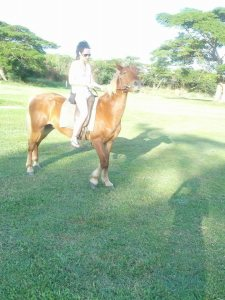 0 horse riding 2