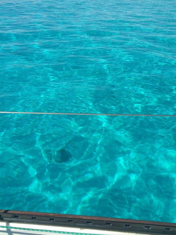 Fiji Waters